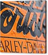 Harley Davidson Logo Acrylic Print