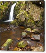 Harthope Linn, Harthope Valley, Northumberland National Park, Northumberland, England Acrylic Print