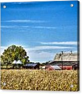 Harvest Time Acrylic Print by Dan Crosby