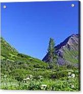 Hatcher Pass Alaska Acrylic Print