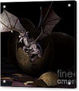 Hatching Dragons Acrylic Print