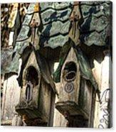 Haunted Birdhouse Acrylic Print