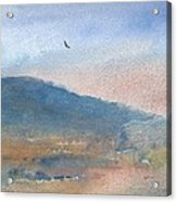 Hawk At Sunset Over Stenbury Down Acrylic Print by Alan Daysh