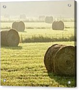 Hay Bales In Mist At Sunrise Acrylic Print
