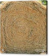 Hay Ball Acrylic Print