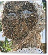 Hay Lady Acrylic Print
