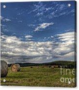 Haymaking Time Acrylic Print