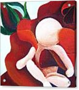 Healing Painting Baby Sitting In A Rose Detail Acrylic Print