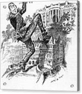 Hearst Cartoon Acrylic Print