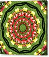 Heart Kaleidoscope Acrylic Print
