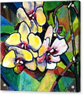 Heart Of The Orchid Acrylic Print