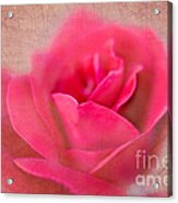 Heart Of The Rose Acrylic Print