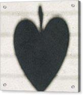 Heart On Wire I Acrylic Print