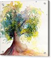 Heart Tree Acrylic Print