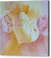 Heart Trio Acrylic Print