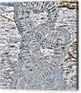 Hearts Cold As Ice Acrylic Print