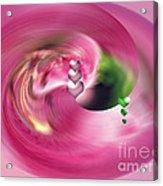 Heartswhirl Acrylic Print