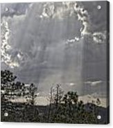 Heavenly Light Img 9204---2012 Acrylic Print