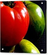 Heirloom Tomatoes Acrylic Print by Maria Scarfone