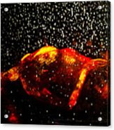 Hell Freezing Over Acrylic Print by D Rogale