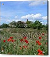 Herault Countryside Acrylic Print