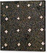 Herculaneum Floor Acrylic Print