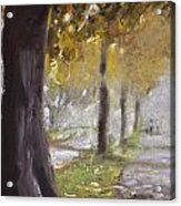 Herne Bay Park Fog 1 Acrylic Print
