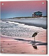 Heron And Beach House Acrylic Print