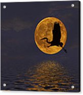 Heron And The Harvest Moon Acrylic Print