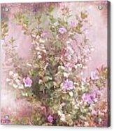Hibiscus The Flower Of Pride Acrylic Print