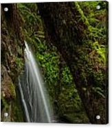 Hidden Falls Acrylic Print
