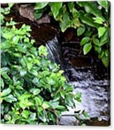 Hidden Waterfall Acrylic Print