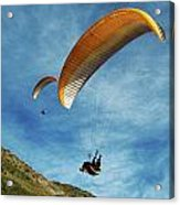High Flyers Acrylic Print