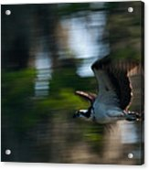 High Speed Pass Acrylic Print