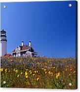 Highland Lighthouse Cape Cod Acrylic Print by Skip Willits