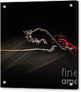 Highway Lighting Effects-red Bull Acrylic Print