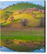 Hill Reflection In Pond Acrylic Print