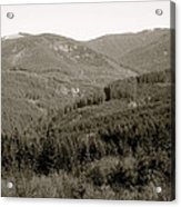 Hills In Black And White Acrylic Print