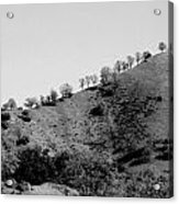 Hilltop In A Row - Black And White Acrylic Print