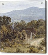 Hindhead From Sandhills Witley Acrylic Print
