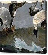 Homer: Right & Left, 1909 Acrylic Print