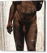 Homo Heidelbergensis Acrylic Print