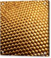 Honey Bee Eye Acrylic Print