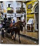 Horse And Buggy In Old Cartagena Colombia Acrylic Print by David Smith