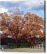 Horse Barn Hill In Autumn Acrylic Print