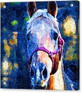 Horse Beautiful Acrylic Print