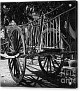 Horse Cart Acrylic Print by Thanh Tran