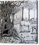 Horse Meadow Acrylic Print