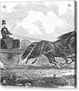 Horse Racing, 1862 Acrylic Print
