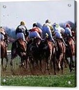 Horse Racing Rear View Of Horses Racing Acrylic Print